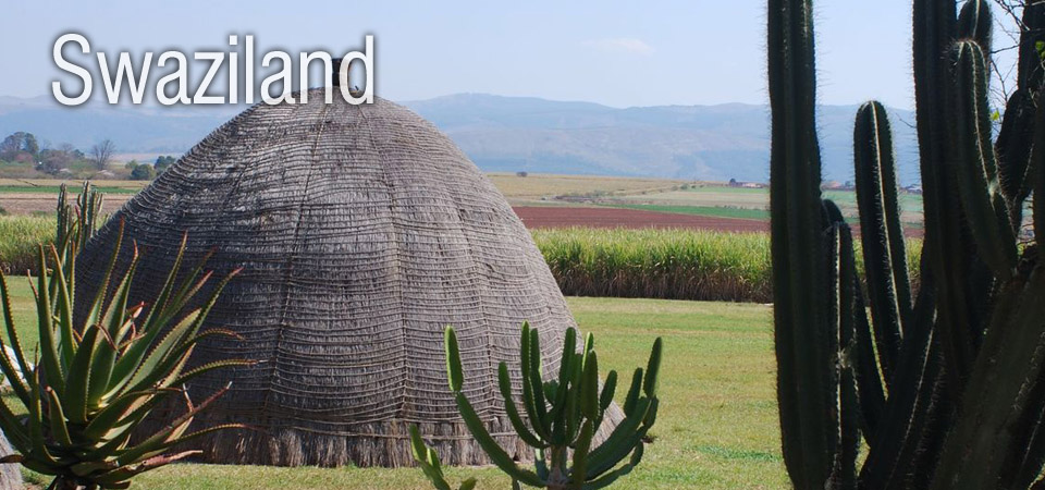 market research africa swaziland swazi marketing analysis reports company
